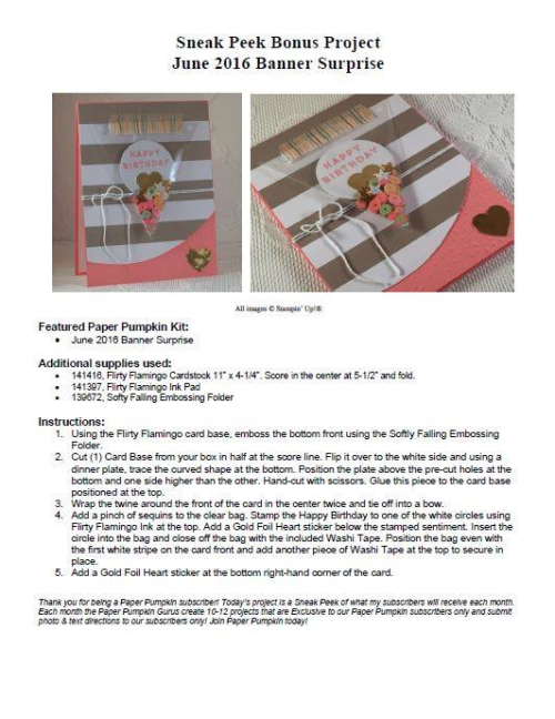 Sampling of what one of my Paper Pumpkin kit exclusive alternate project sheets look like (a project idea from the June 2016 Banner Surprise kit). Subscribe today, and get 10-14 exclusive ideas each month!… #stampyourartout #stampinup - Stampin' Up!® - Stamp Your Art Out! www.stampyourartout.com