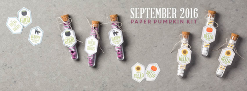 The September 2016 Something Good to Eat Paper Pumpkin kit … #stampyourartout - Stampin' Up!® - Stamp Your Art Out! www.stampyourartout.com