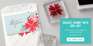 Stampin' Up!'s November 2016 special: select stamp sets on sale for 25% off AND a new set of dies you may just need to add to your crafting collection.… #stampyourartout - Stampin' Up!® - Stamp Your Art Out! www.stampyourartout.com