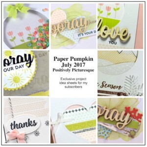 Sneak Peek at the July 2017 Positively Picturesque Paper Pumpkin Kit exclusive alternate projects ...#stampyourartout #stampinup - Stampin' Up!® - Stamp Your Art Out! www.stampyourartout.com