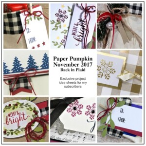 Sneak Peek at the November 2017 Back in Plaid Paper Pumpkin Kit exclusive alternate projects ...#stampyourartout #stampinup - Stampin' Up!® - Stamp Your Art Out! www.stampyourartout.com