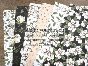 Get in on Rachel Tessman's 2019-20 Annual Catalog Product Shares! #stampyourartout #stampinup - Stampin' Up!® - Stamp Your Art Out! www.stampyourartout.com