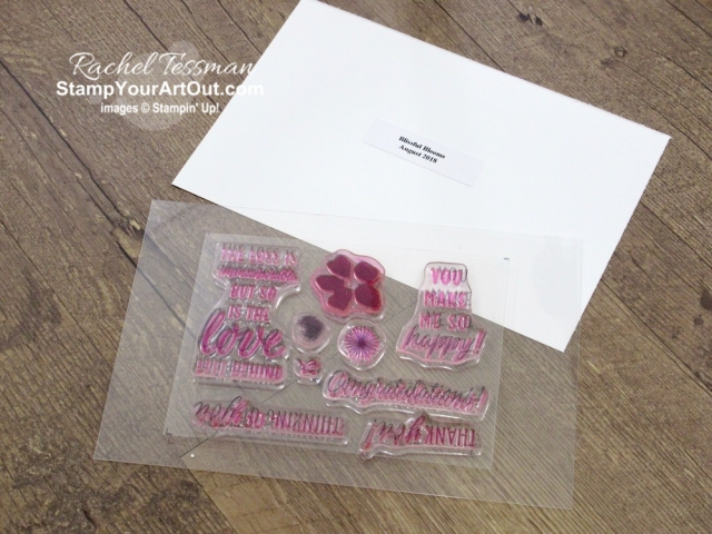 Store your Paper Pumpkin stamp sets in photo pocket pages within a 6x8 Memories & More Album. Click here to get more details and see more photos of this organization method. You can also access Stamp Set Case Inserts from January 2015 forward through my website if you use that method. #onestopbox #stampyourartout #stampinup - Stampin' Up!® - Stamp Your Art Out! www.stampyourartout.com
