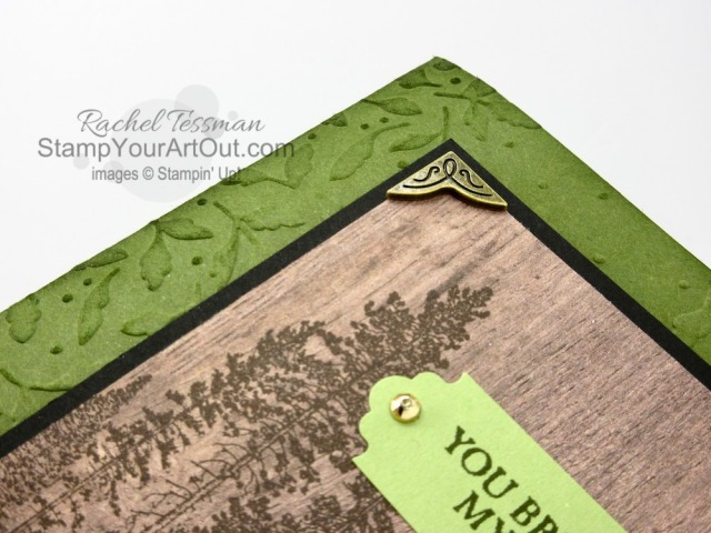 Campology meets Meadow Moments to make this handsome greeting card! Click here to access measurements, more photos, tips, and links to the products I used. - Stampin' Up!® - Stamp Your Art Out! www.stampyourartout.com